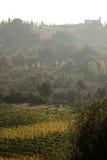 wzgórza Tuscany Zdjęcia Stock
