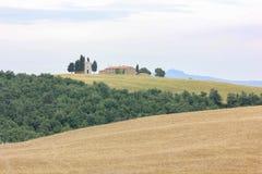 Wzgórza Valdorcia w Tuscany obraz stock