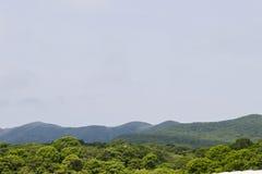 Wzgórza w mgle Obrazy Stock