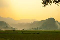 Wzgórza w złotym wieczór świetle Fotografia Stock