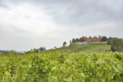 Wzgórza z winnicami i grodowy Brolio na deszczowym dniu w jesieni zdjęcia royalty free