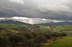 wzgórza zielony światło słoneczne Zdjęcie Royalty Free