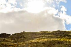 Wzgórze krajobraz Obraz Stock