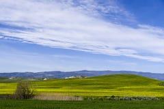 Wzgórze krajobraz przy wiosną z niebem i łąką Obraz Royalty Free