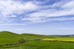 Wzgórze krajobraz przy wiosną z niebem i łąką Zdjęcia Royalty Free