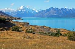 Wzgórze na Pukaki jeziorze Zdjęcia Royalty Free