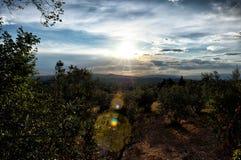 Wzgórze Tuscany, raj jest następnie II obrazy royalty free