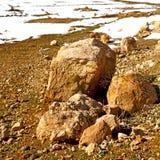 Wzgórze w Africa Morocco atlant doliny góry sucha ziemia jest Zdjęcie Royalty Free