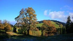 Wzgórze w Austria Obraz Royalty Free