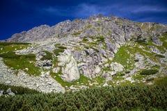 Wzgórze w Wysokim Tatras, Sistani Zdjęcia Stock