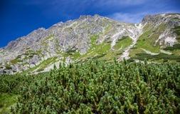 Wzgórze w Wysokim Tatras, Sistani Obraz Royalty Free