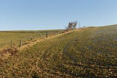 Wzgórze w zimie obrazy stock