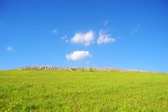 Wzgórze z zieloną trawą i niebieskie niebo Planetujemy zieleń - ziemia - Obraz Royalty Free