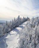 wzgórze zakrywający śnieg Zdjęcie Royalty Free