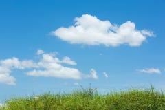 Wzgórze zielona trawa Obraz Stock
