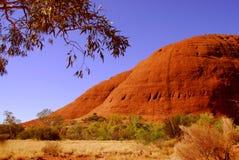wzgórzy czerwieni skała Fotografia Royalty Free