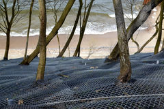 Wzmacniać siatkę z kotwicowym uczepieniem skłon na brzeg morze bałtyckie obrazy royalty free
