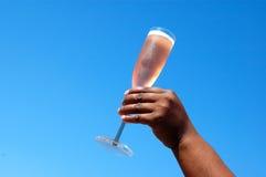 wznieść toast Zdjęcie Stock