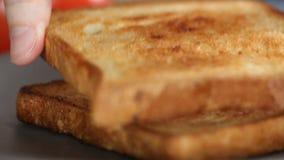 Wznoszący toast kawałek chleb zbiory