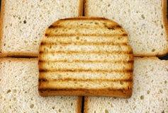 Wznoszący toast chlebowy plasterek Obraz Stock
