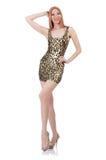 Wzorcowa jest ubranym modna odzież Zdjęcie Royalty Free