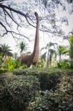 Wzorcowy dinosaur Obrazy Stock