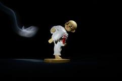 Wzorcowy karate wojownik Obrazy Royalty Free