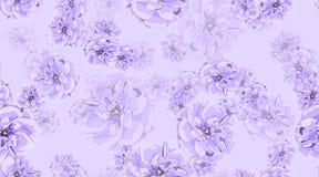 wzoru róży bezszwowy rocznik obraz royalty free