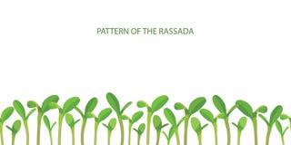 Wzory rozsady Uprawy produkcja rosnąca warzywa Wysiewny ogrodnictwo Przyrost rośliny wektor ilustracja wektor