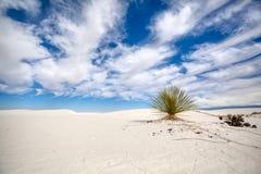 Wzory w piasku przy Białych piasków Krajowym zabytkiem zdjęcie stock