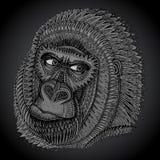 Wzorzysta głowa goryl w grafika stylu Fotografia Royalty Free