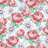 Wzrastał i chamomile kwiatu ręka rysuje bezszwowego wzór, wektorowy kwiecisty tło, kwiecisty hafciarski ornament Patroszeni pączk Obraz Royalty Free