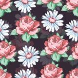 Wzrastał i chamomile kwiatu ręka rysuje bezszwowego wzór, wektorowy kwiecisty tło, kwiecisty hafciarski ornament Patroszona pącze Zdjęcie Stock