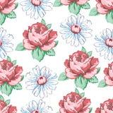Wzrastał i chamomile kwiatu ręka rysuje bezszwowego wzór, wektorowy kwiecisty tło, kwiecisty hafciarski ornament rysujący Fotografia Royalty Free