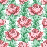 Wzrastał kwiat rękę rysuje bezszwowego wzór, wektorowy kwiecisty tło, kwiecisty hafciarski ornament Patroszona pączek menchii róż Zdjęcia Royalty Free