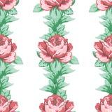 Wzrastał kwiat rękę rysuje bezszwowego wzór, wektorowy kwiecisty tło, kwiecisty hafciarski ornament Patroszona pączek menchii róż Obraz Royalty Free
