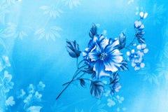 Wzrastał kwiatu błękita tło Obraz Stock