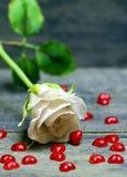 Wzrastał kwiatu i małych czerwonych serc rozpraszających na drewnianym stole Obraz Royalty Free