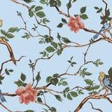 Wzrastał okwitnięcie gałąź z ptasim bezszwowym wzorem ilustracji