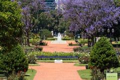 Wzrastał parka, Buenos Aires Argentyna (Rosedal) zdjęcia royalty free
