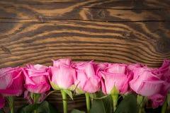 Wzrastał kwiat Zdjęcie Royalty Free