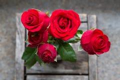Wzrastał kwiatu na drewnianym tle Zdjęcie Royalty Free