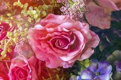Wzrastał kwiatu use dla walentynki ` s dnia, rocznik retro Zdjęcie Stock