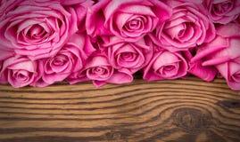 Wzrastał kwiaty Obrazy Royalty Free