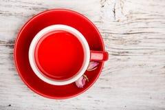 Wzrastał pączkowej herbaty Obraz Royalty Free