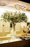 Wzrokowy wchodzić do w środkowym Strasburskim zakupy sklepu okno royalty ilustracja