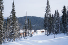 Wzrostów domy lokalizują wśród lasów zima i dolin Obraz Royalty Free