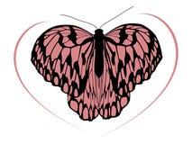 Wzrost ilości odszukany motyl 1 Obraz Royalty Free