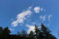 Wzrost niebo Zdjęcia Royalty Free
