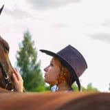 Wzruszający koń Obrazy Royalty Free
